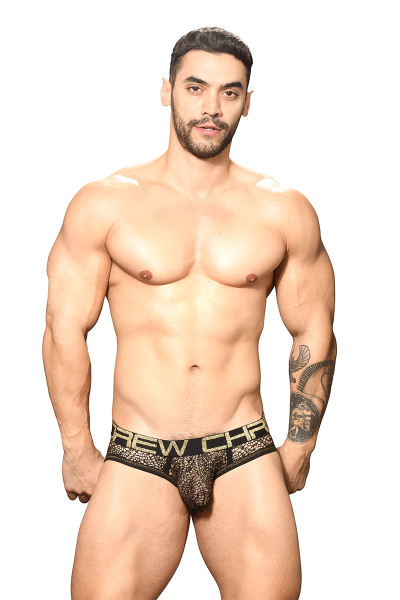 Andrew Christian El Dorado Mesh Brief w/ Almost Naked 91753 - Mens Briefs - Front View - Topdrawers Underwear for Men