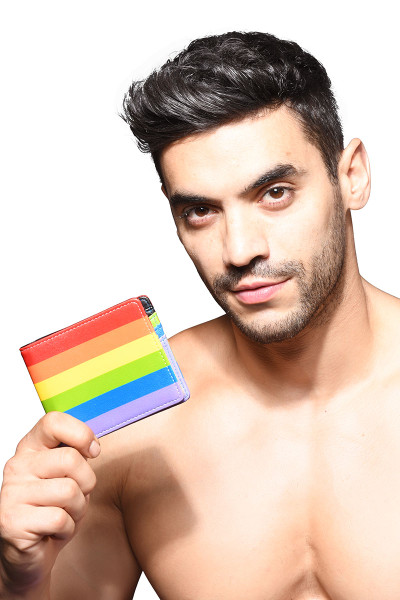 Andrew Christian Pride Stripe Wallet 8462 - Mens Wallets - Front View - Topdrawers Accessories for Men