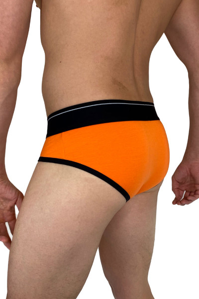 Dirt Squirrel Tangerine Brief 0306  - Mens Briefs - Rear View - Topdrawers Underwear for Men