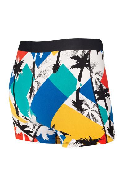 Saxx Daytripper Boxer Brief w/ Fly | Multi Miami Nice SXBB11F-MNM - Mens Boxer Briefs - Rear View - Topdrawers Underwear for Men