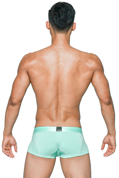 Private Structure Platinum Bamboo Trunk PBUX4073-MNT - Mens Trunk Boxers - Rear View - Topdrawers Underwear for Men