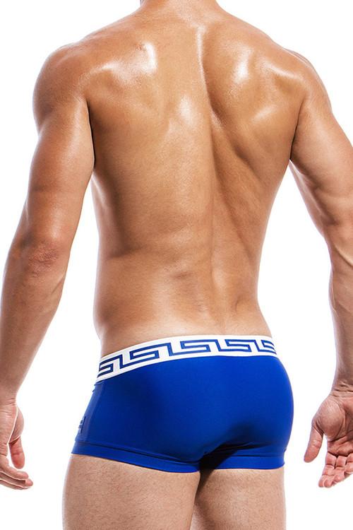 Blue - Modus Vivendi Meander Brazil Cut Swim Boxer DS1821 - Rear View - Topdrawers Swimwear for Men