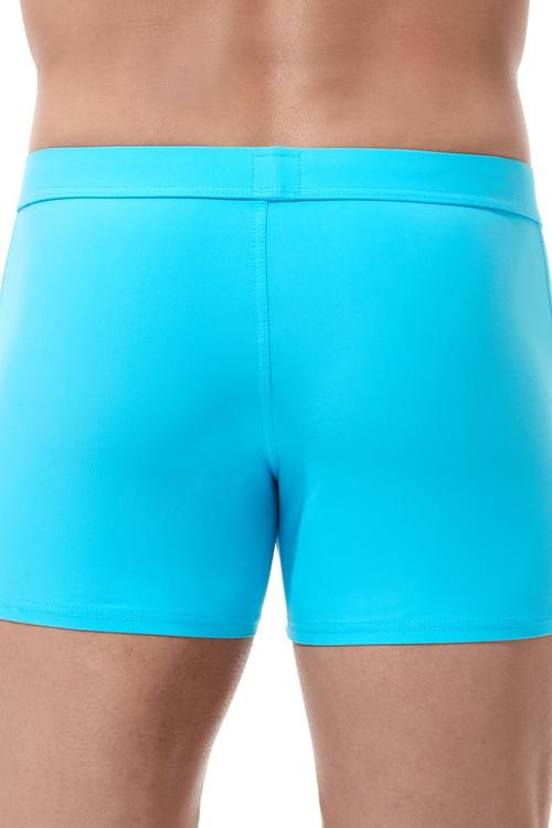 Gregg Homme Exotic Swim Boxer Brief 161205- Aqua - Mens Swim Trunks - Rear View - Topdrawers Swimwear for Men