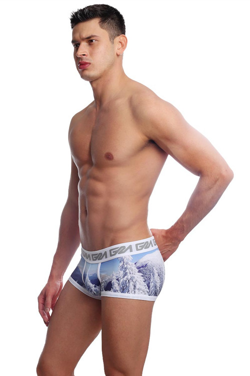 Garçon Model Whistler Trunk GM19-WHISTLER-TR - Mens Trunk Boxer Briefs - Side View - Topdrawers Underwear for Men