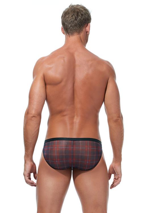 Gregg Homme Gaelic Briefs 172003 - Mens Briefs - Rear View - Topdrawers Underwear for Men