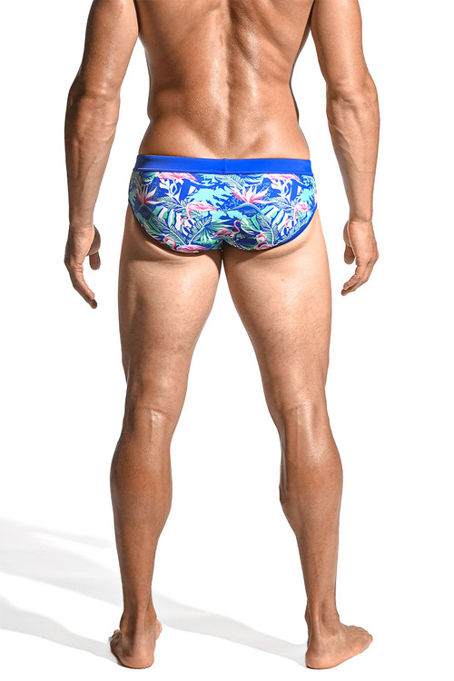 ST33LE Freestyle Swim Brief   Pink/Azure Flamingo ST-8000-59 - Mens Swim Bikinis - Rear View - Topdrawers Swimwear for Men