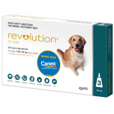 Revolution for Dogs 20.1-40 kg - Teal 3 Pack with Bonus Canex Worming Tablets