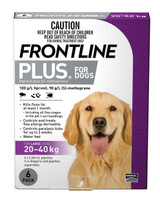 Frontline Plus for Large Dogs 20-40kg - 6 Pack