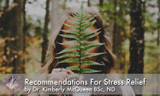 Recommendations for Stress Relief