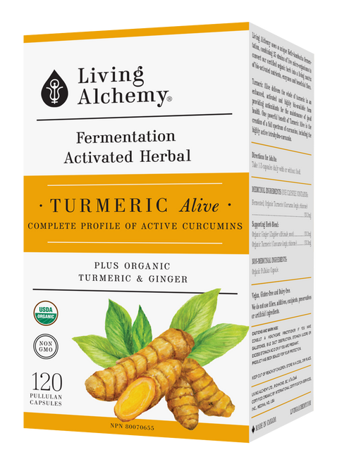 Living Alchemy: Turmeric Alive Front