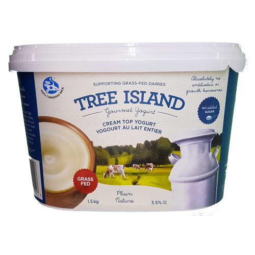 Tree Island Cream Top Yogurt - Plain