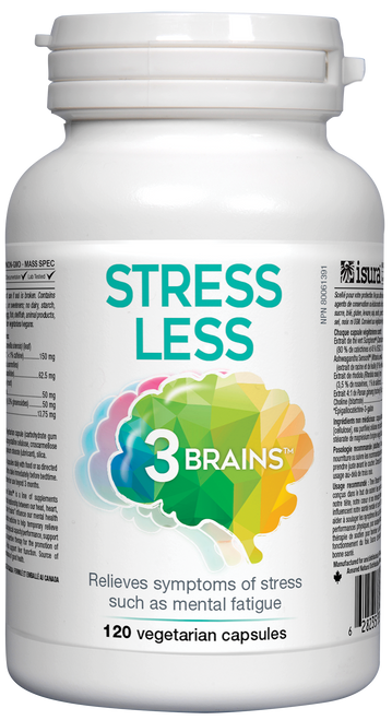 3 Brains: Stress Less