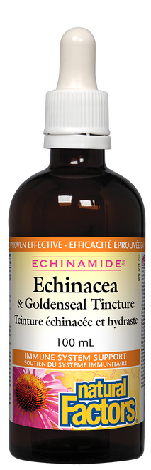 Natural Factors: Echinamide Anti-Cold with GoldenSeal (100ml)