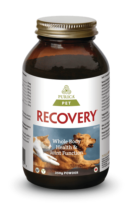 Purica: Recovery SA (For PETS) (350g)