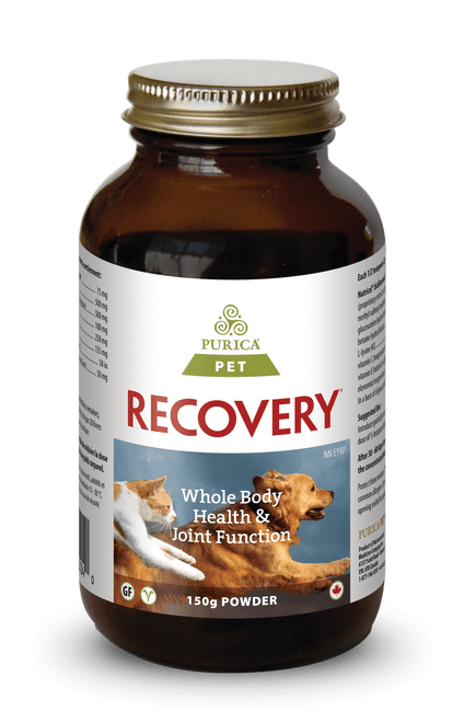 Purica: Recovery SA (For PETS) (150g)
