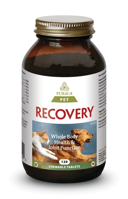 Purica: Recovery SA (For PETS) (120 Chewable Tablets)