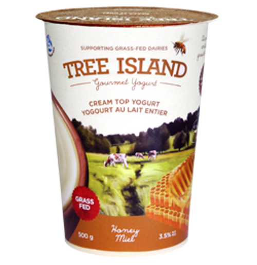 Tree Island: Cream Top Yogurt - Honey