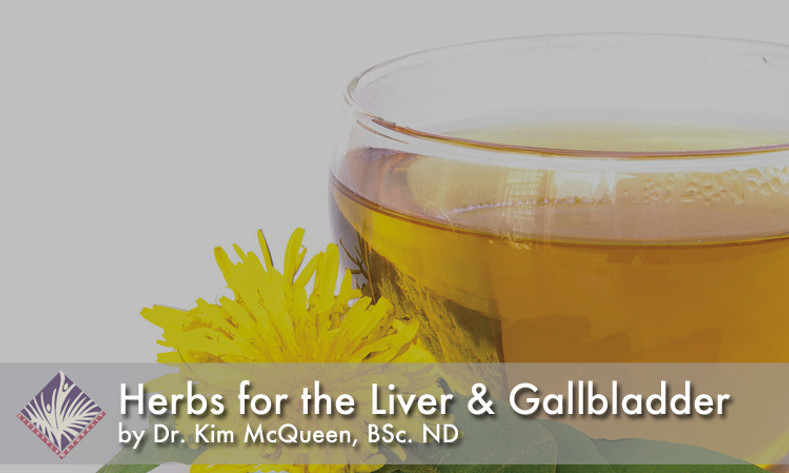 Herbs for the Liver and Gallbladder