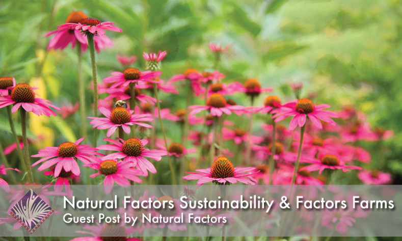 Natural Factors Sustainability & Factors Farms