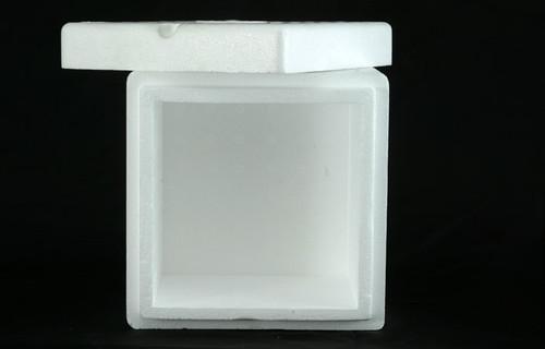 Molded 7x7x6 EPS USPS box (2 Pack)