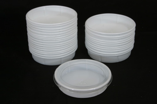 Small Worm Dish 50 Count