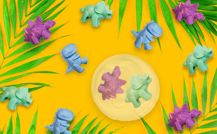 Dinosaur Soap Kit