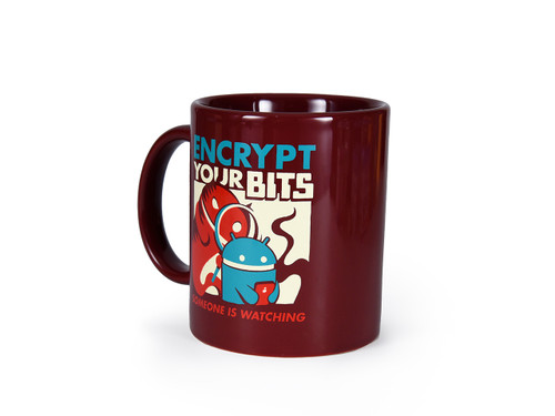 Encrypt Your Bits Mug