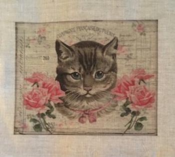 One Kitten (Horizontal)
