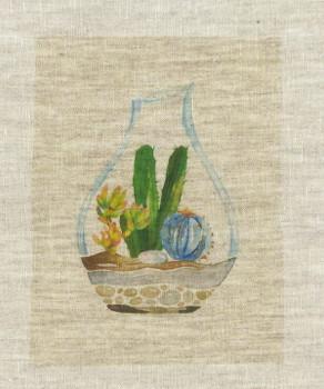 Terrarium Cacti