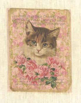 One Kitten (Vertical)