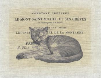 Le Mont Saint-Michel et Ses Greves