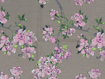 Taupe Background with Apple Blossoms