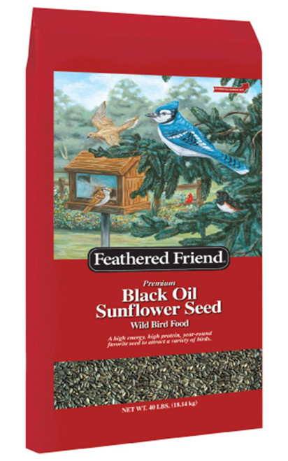 Feathered Friend Black Oil Sunflower Seed, 40 lb