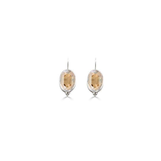Charmed Golden Shadow Drop Earrings (E4661)
