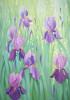 Iris Garden - Garden Flag by Serious