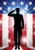 Stars and Stripes Salute - Standard Flag by Serious