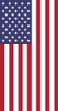 USA Flag - Standard Flag by Serious