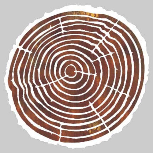 019239 - Tree Ring