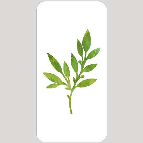 M20133 - Leafy Wildflower