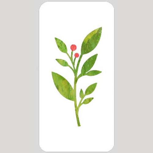 M20135 - Leaves & Berries Wildflower