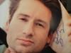 "Duchovny, David Color Photo Signed Autograph ""X Files"""