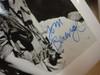 "Sheen, Charlie Willem Dafoe Tom Berenger ""Platoon"" Photo 1986 Signed Autograph Movie Scene"