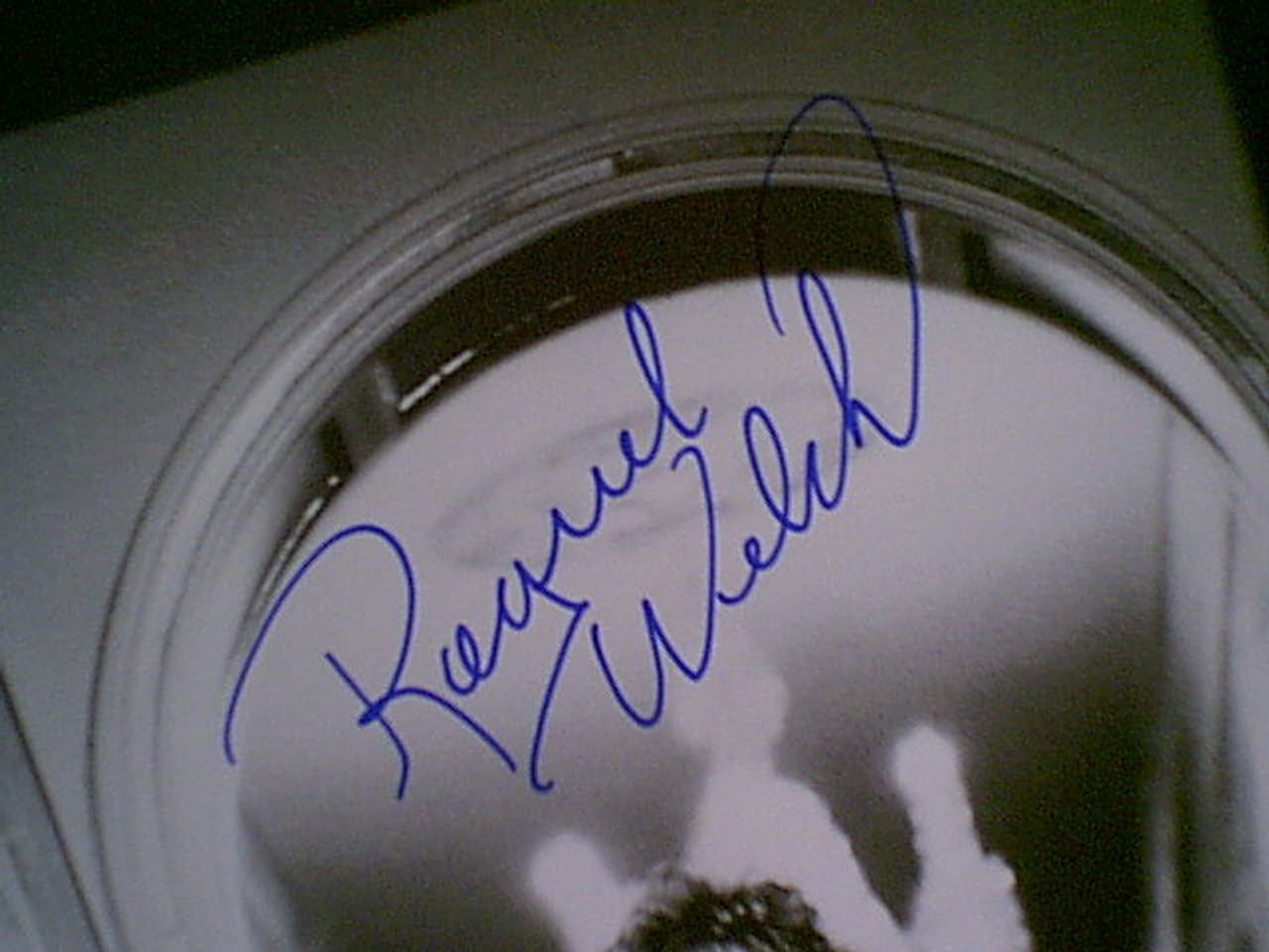 Welch, Raquel Photo Signed Autograph Cheesecake