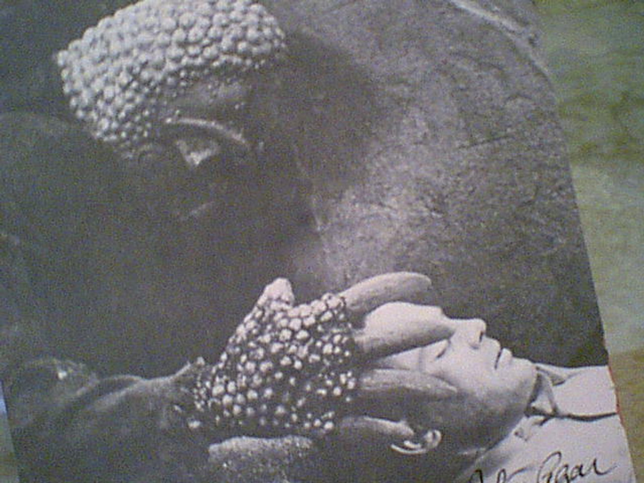 Agar, John The Mole People Movie Scene Photo Signed Autograph