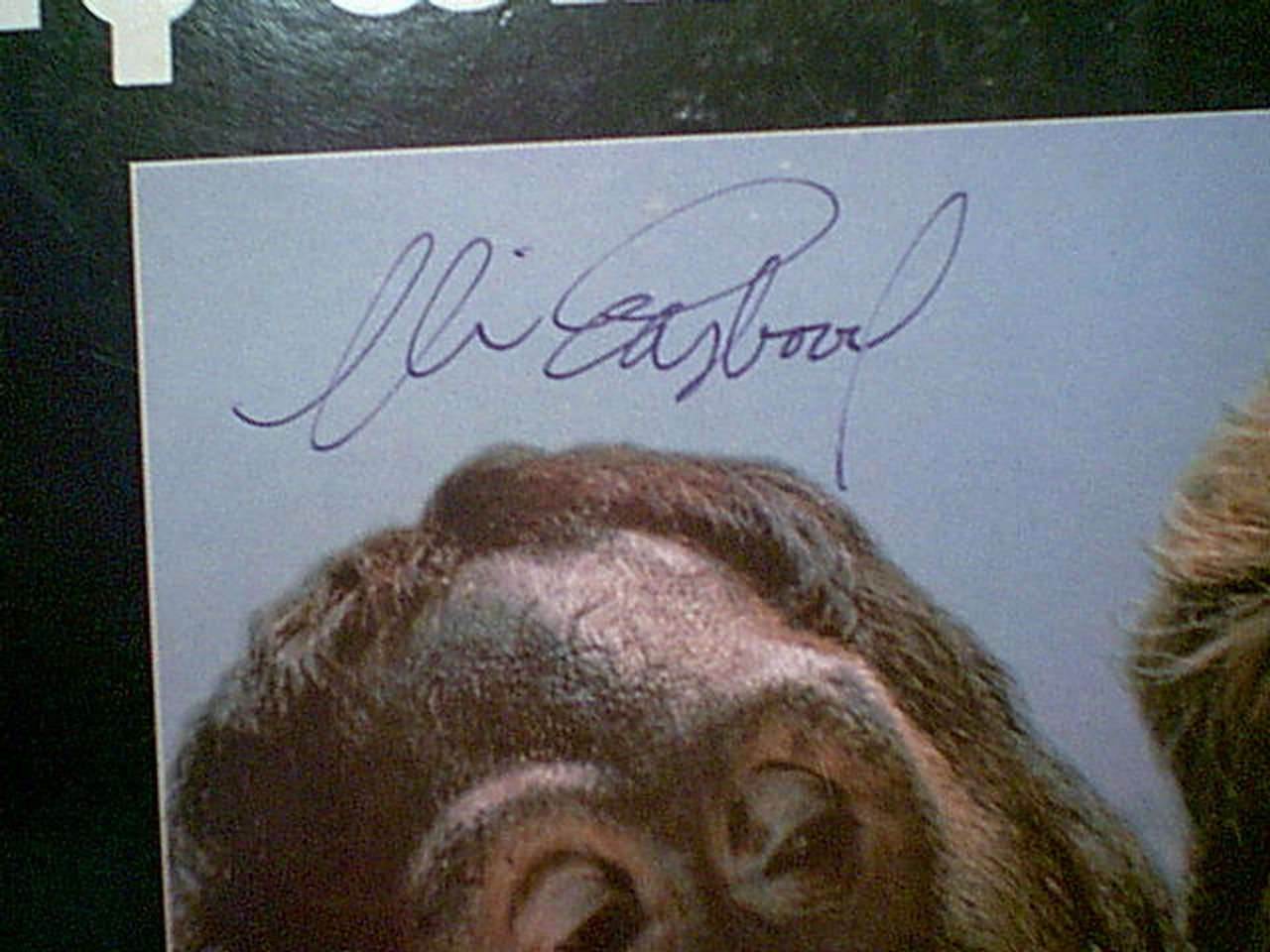 """Eastwood, Clint """"Every Which Way But Loose"""" 1987 LP Signed Autograph Color Cover Photo"""