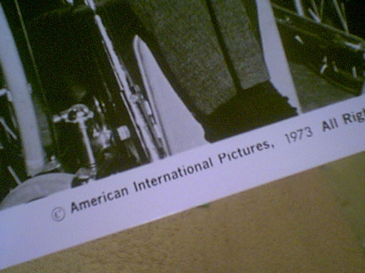 Milland, Ray 1973 Photo Signed Autograph Movie Scene