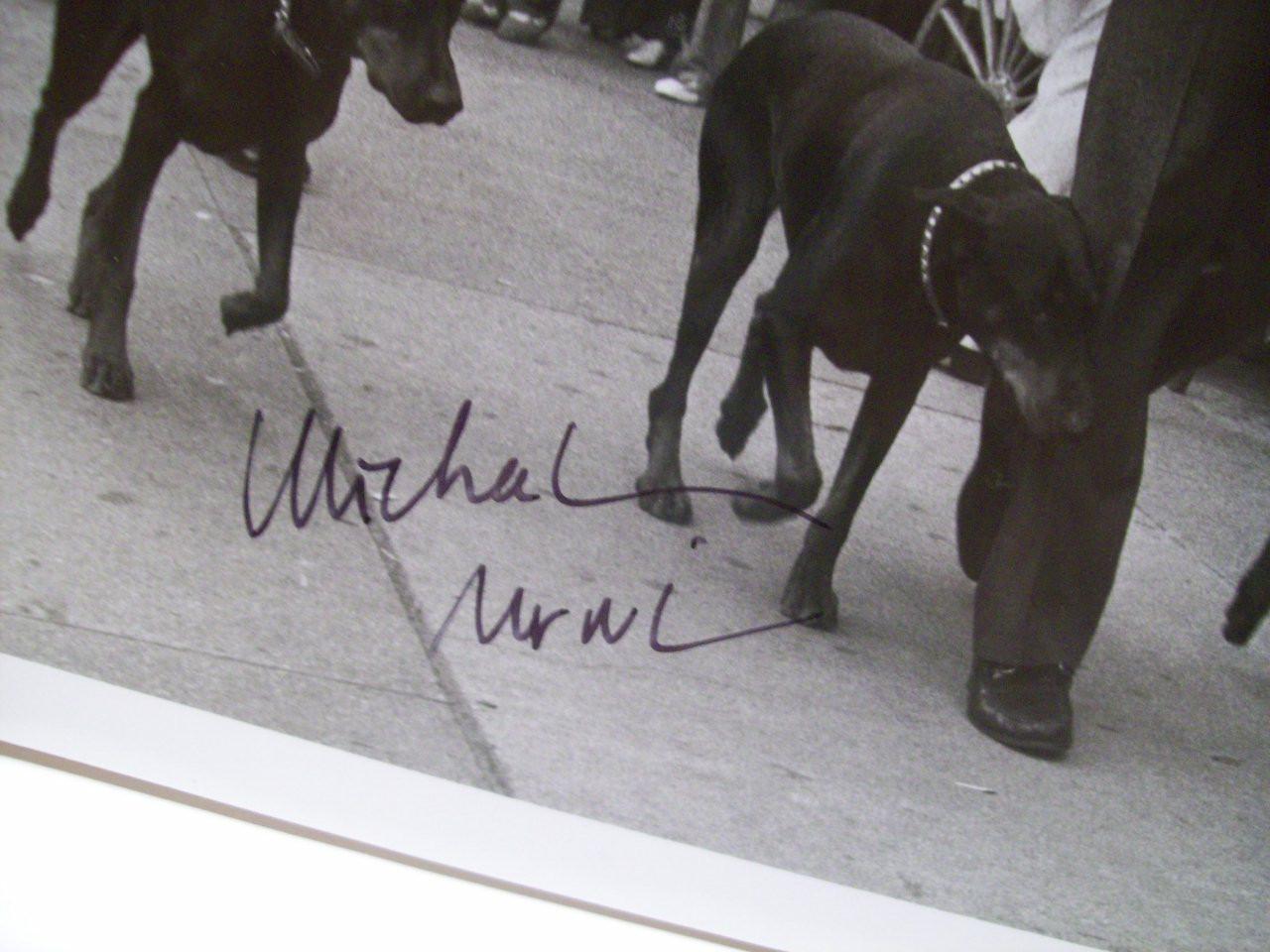 Nouri, Michael Photo Signed Autograph The Doberman Gang 1980