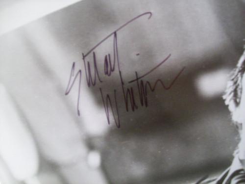 Whitman, Stuart Photo Signed Autograph Shatter 1974