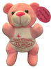 Front View of pink plush Las Vegas Bear with welcome sign embroidered on her  tummy.
