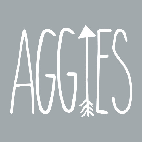 Texas A&M Aggies 4.5 x 3.5 Arrows Decal | White